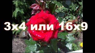 Как преобразовать формат фото из #3х4 на формат #16х9 для видео на Youtube