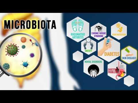 netsurfs'-advanced-nutraceutical-naturamore-plus-|||