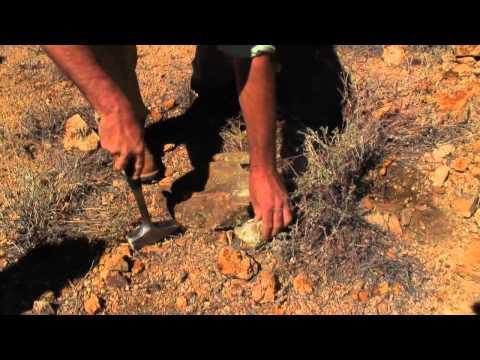 Arizona Geologist Copper Exploration