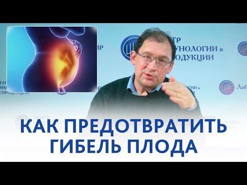 Гибель плода. Как избежать инфаркта плаценты и гибели плода.