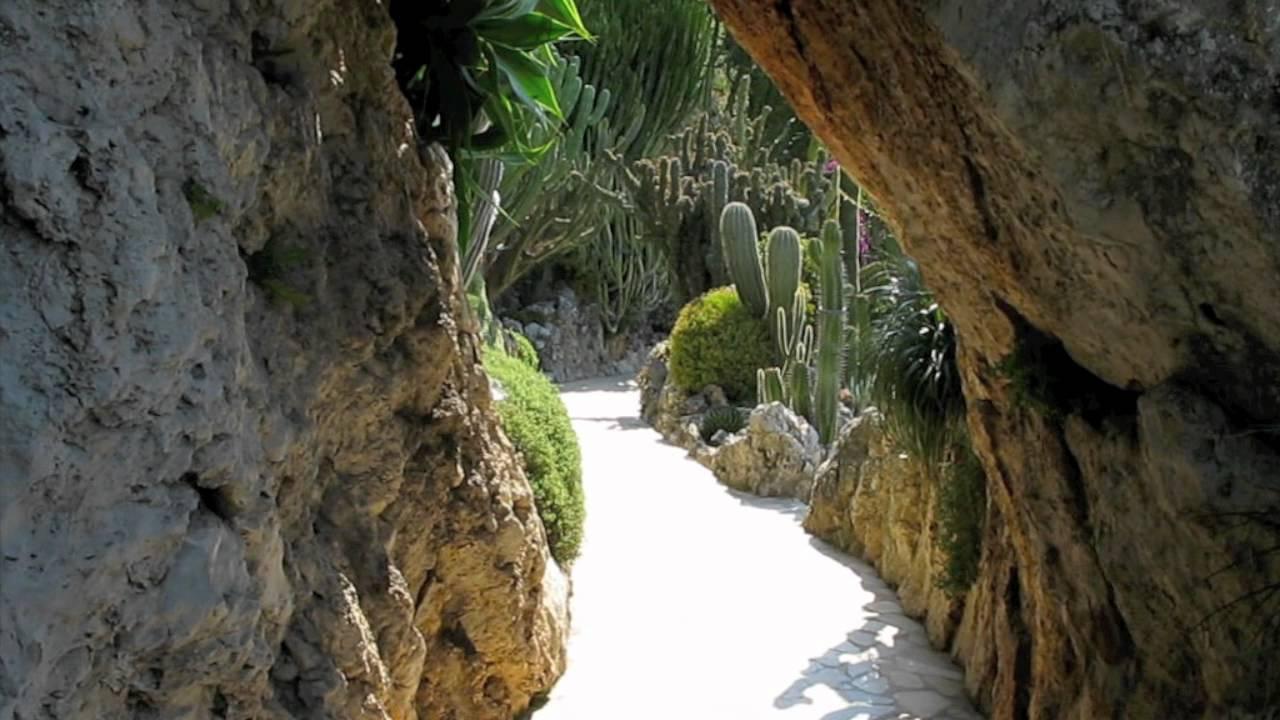 Film Botanischer Garten Monacomov Youtube