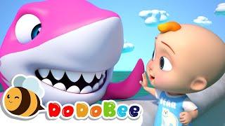 BABY SHARK - Songs for Children - Cartoon for Kids - toddler Videos - DODOBEE - Nursery Rhymes