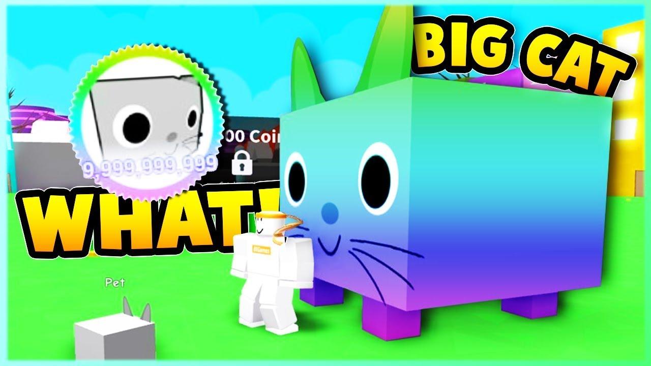 *NEW* Overpowered BIG CAT Pet! Pet Simulator   Roblox