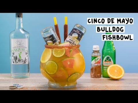 Cinco De Mayo Bulldog Fishbowl - Tipsy Bartender