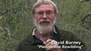 Paul S. Martin, Pleistocene Ecologist: Colleagues Honor His Legacy, 2011