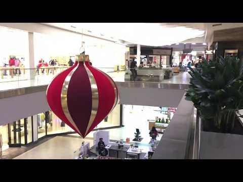 Searching Something Vegan In Perimeter Mall Atlanta GA