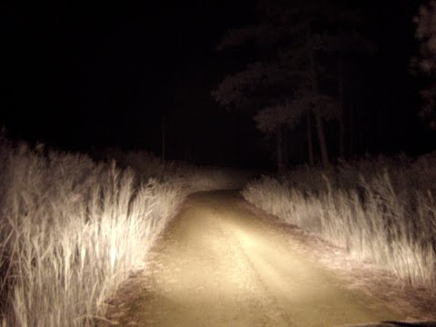 The 5 Most Haunted Roads in Eastern Virginia - The Paranormal Pub Table
