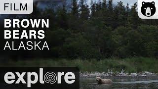 Brown Bears - Katmai National Park - Film thumbnail