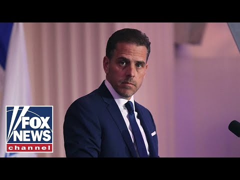 Networks will continue to 'gloss over' report on Hunter Biden: Jones