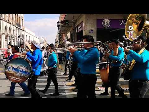 Son de la Rabia y Ordeñando la Vaca , Banda La Innovadora de Oaxaca