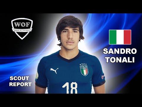 SANDRO TONALI   Crazy Goals, Skills, Assists   Brescia 2018/2019 (HD)