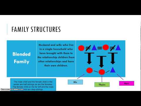 Family Structures LESSON 2