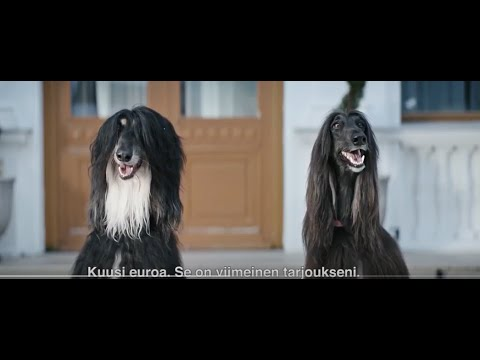 Tokmanni TV ad for Finland
