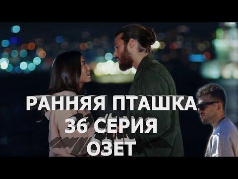 РАННЯЯ ПТАШКА 36 СЕРИЯ. ОПИСАНИЕ НОВОЙ СЕРИИ.