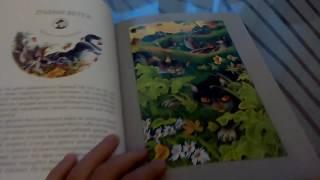 """Обзор книги """"КОТЫ-ВОИТЕЛИ: Герои племён"""""""