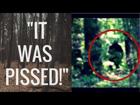 6 Terrifying  Encounters With Sasquatch/Bigfoot!