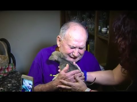 This Man Was Hospitalized After His Dog Was Mauled  Then He Got News That Left Him In Pieces