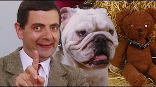 dog-show-funny-clips-mr-bean-official