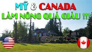 Làm Nông Nghiệp ở MỸ & CANADA giàu cỡ nào | Thăm khu nhà giàu Ở CANADA | Quang Lê TV #56