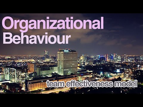 Team Effectiveness Model