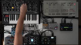 Ambient jam w/ NDLR, Moog Grandmother, Roland JU-06A, ARP Odyssey, Dreadbox Typhon, Strymon NightSky