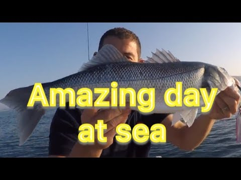 Sea Fishing Cornwall - Fantastic Mixed Species Day Solo On My Boat
