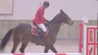 Ook Koen Wauters valt van zijn paard | Wauters vs. Waes | VTM
