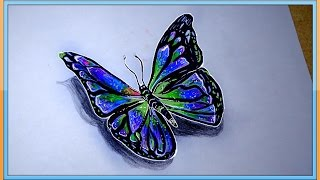 butterfly drawing simple draw realistic