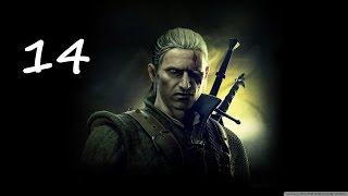 The Witcher 2 Assassins of Kings Прохождение Серия 14 (Накеры и Эндриаги)