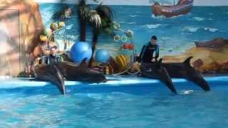 Дельфинарий Минск(, 2013-05-02T13:22:18.000Z)