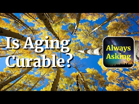 Is Aging Curable? - AlwaysAsking.com