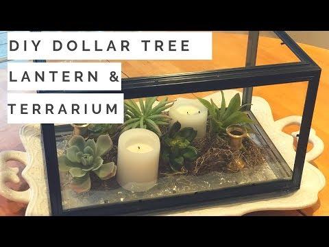 DIY LANTERN & DIY TERRARIUM | A Single Dollar Tree DIY Two Ways! 2019