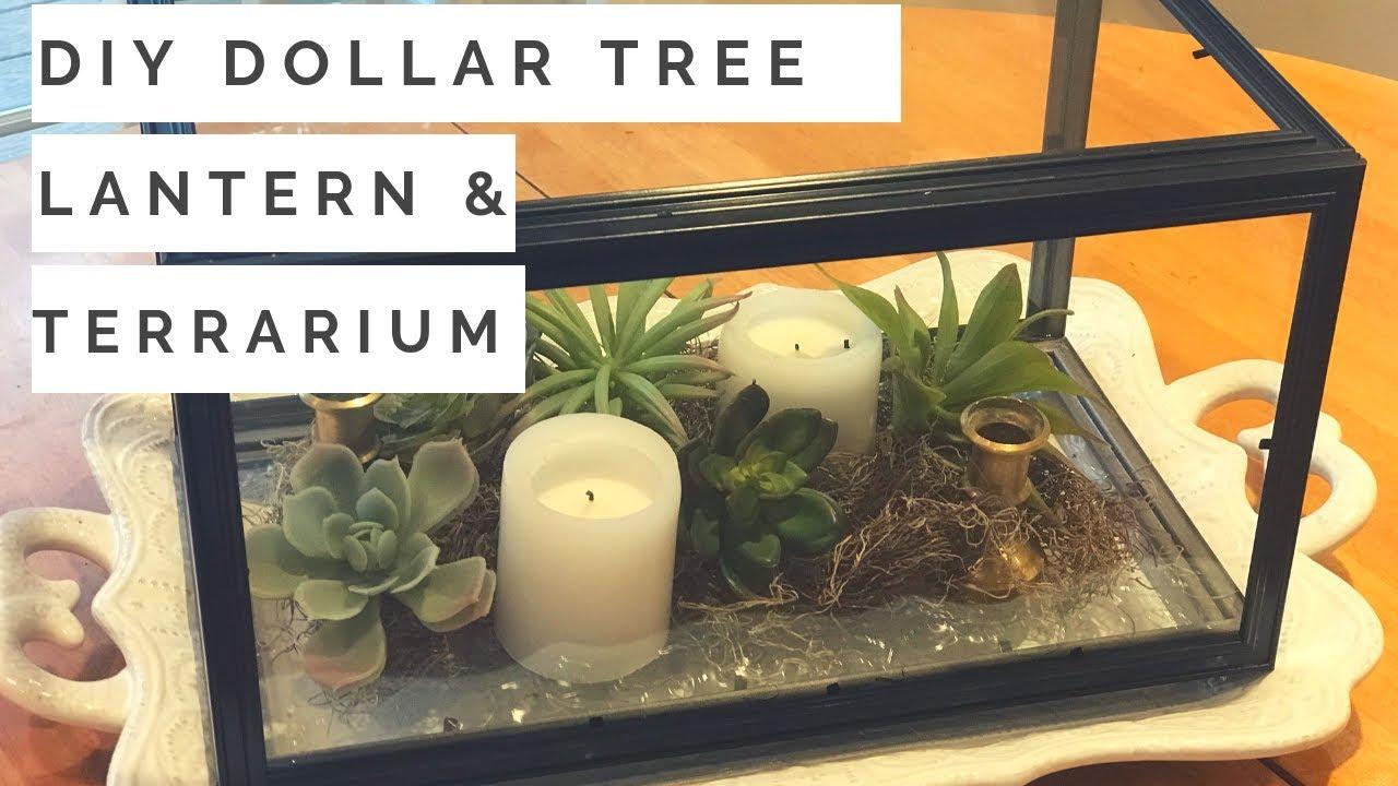 Diy Lantern Diy Terrarium A Single Dollar Tree Diy Two Ways