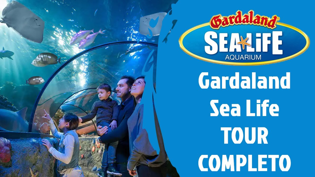 Gardaland Sea Life - Tour completo Full HD - YouTube