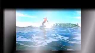 Learn Surf practice 21 video 2014