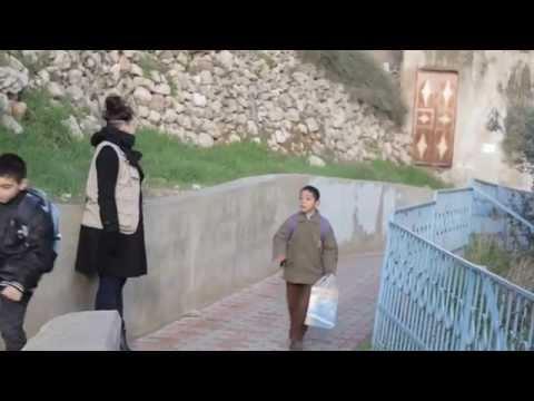 Ecumenical Accompaniment Programme In Palestine And Israel (EAPPI)