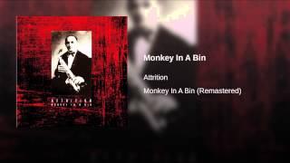 Monkey In A Bin