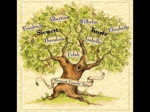 شجرة عائلتك في ١٠ دقايق بالعربي و الإنجليزي