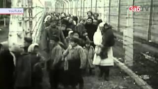 Ветеран рассказал, как фашисты издевались над ним в концлагере