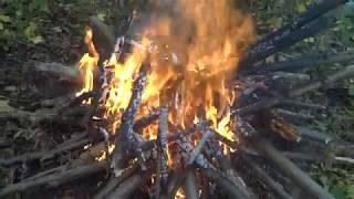 Мясо в фольге на углях в лесу. Часть 2-снимаю пробу.