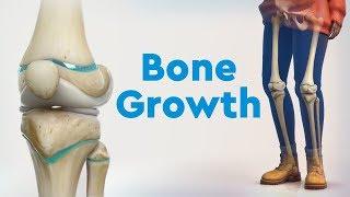 Bone Growth and Limb Deformities