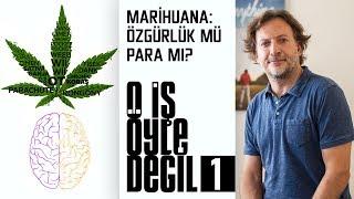 O İş Öyle Değil  | 1.Bölüm | Marihuana: Özgürlük mü Para mı?
