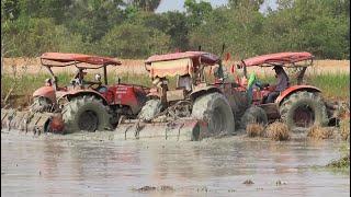Tractor Kubota With Rotavator Stuck in Mud ត្រាក់ទ័រ Kubota M6040 ភ្ចូរស្រែជាប់ផុង