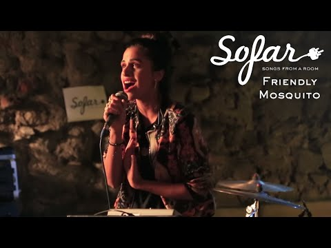 Friendly Mosquito - Tales of Eastern Nights   Sofar Tbilisi