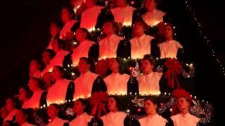 2014 Mona Shores Singing Christmas Tree