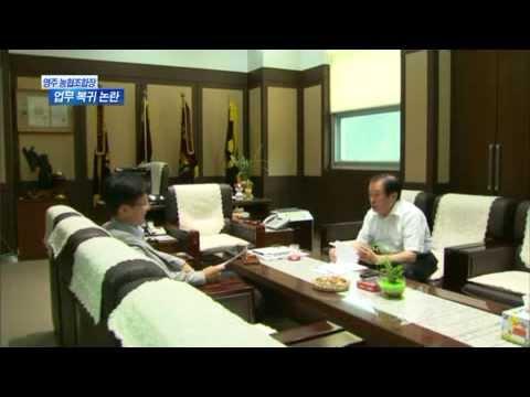 [대구MBC뉴스] 영주농협조합장 이상한 업무복귀
