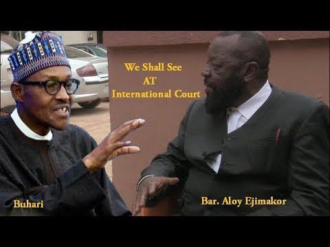 Why I Took Nnamdi Kanu Case Against Buhari To International Court.