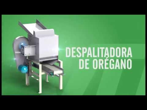DESPALITADORA DE ORÉGANO - Vulcanotec