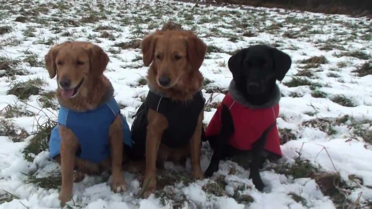 Hurtta Winterjacken Wintermantel Hundebekleidung Hundemantel | HUND ...