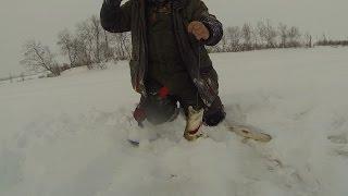 Зимняя рыбалка Щука Новый Уренгой